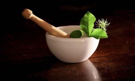 13 Remèdes de grand-mères : La santé par les plantes