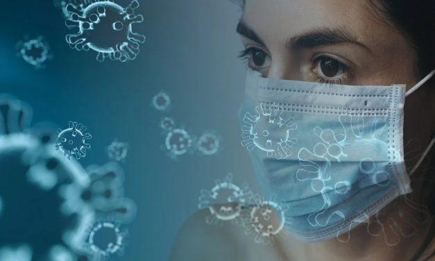 Découverte d'anticorps pour Coronavirus bloquant l'infection dans les cellules